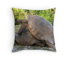 DIfficult Work Throw Pillow