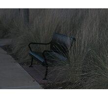 Dark & Empty Bench Photographic Print
