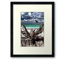Sanibel Framed Print