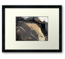 Natures signature Framed Print