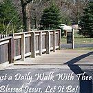 Daily Walk by grannyjune