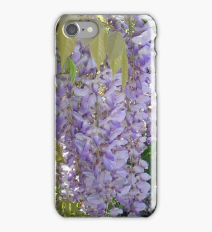 Wisteria Racemes iPhone Case/Skin