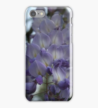 Purple and Violet Wisteria Blossom iPhone Case/Skin
