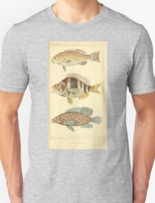 The Animal Kingdom by Georges Cuvier, PA Latreille, and Henry McMurtrie 1834 209 - Pisces Fish Unisex T-Shirt