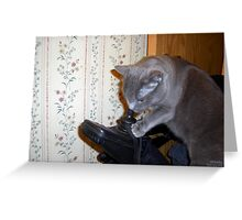 CAT TEACHES HIMSELF TO RUN WHEELCHAIR Greeting Card