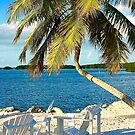 Morada Bay Beach by Cheryl  Lunde