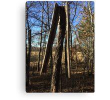 Lightening Struck Tree Canvas Print