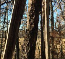 Lightening Struck Tree Sticker