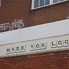 MADE YOU LOOK by Matt  Williams