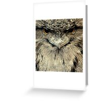 Tawny Frogmouth Greeting Card