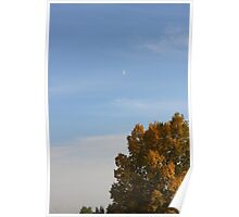 Fall sky Poster