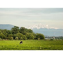 Farm Country Photographic Print