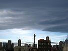 Grey May Morning, Sydney by John Douglas