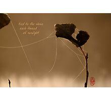 autumn gold Photographic Print