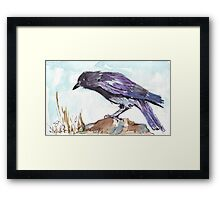 The playful Crow Framed Print