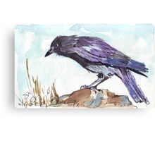 The playful Crow Canvas Print