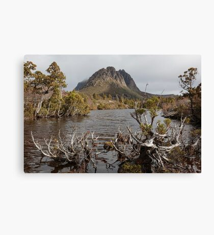 Twisted Lake Canvas Print