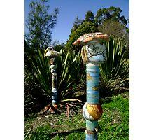 Aboriginal Totem Poles Photographic Print