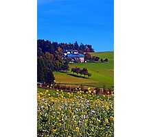 Panorama behind a sea of flowers | landscape photography Photographic Print