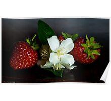 Jasmine with strawberries Poster