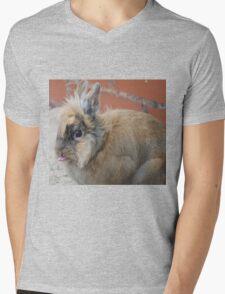 Patch (Rabbit) cheeky Mens V-Neck T-Shirt