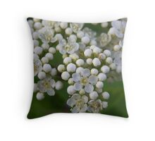 Blossom of the Rowan Tree. Throw Pillow