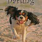 Darling 2015 by Cathie Brooker