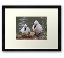 So Little Brother As I Was Saying ....... Framed Print