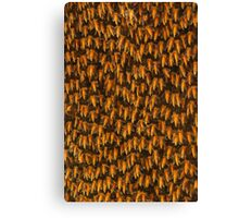 Honeybees Canvas Print