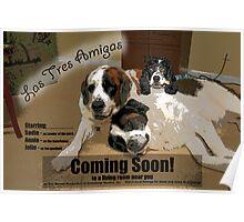 Las Tres Amigas Poster