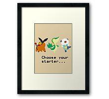 5th Gen Starters Framed Print