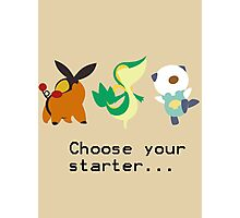 5th Gen Starters Photographic Print