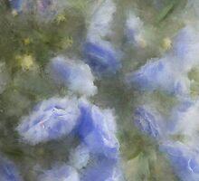 Painted Campanula by Ann Garrett