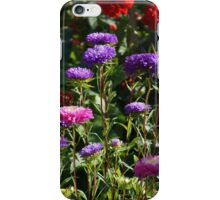 Spring flowers 1 iPhone Case/Skin
