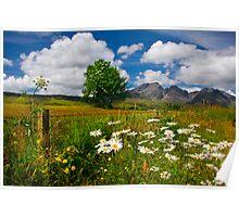 Blaven, and Summer Flowers, Torrin, Isle Of Skye, Scotland. Poster