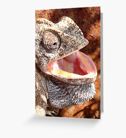 The Laughing Chameleon Greeting Card