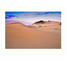 ECO Dunes Art Print