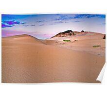 ECO Dunes Poster