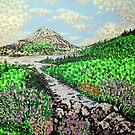 Mount Errigal by Alan Hogan