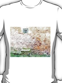 Laureana Cilento: mailbox and wall T-Shirt