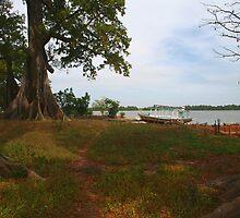 Boat and Baobabs, Bintang Gambia by Mishimoto