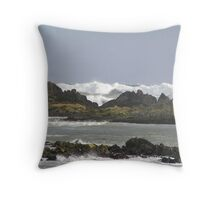 Mother Natures' Washin' machine Throw Pillow