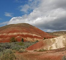 Painted Hills by Randall Scholten