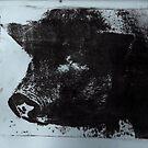 Celeste the Pig by Susan Grissom