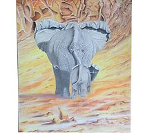 Elephants in the sand by Mckenzzie