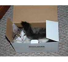 Read the Box Photographic Print
