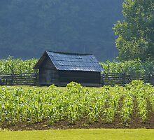Smoky Mountain Farm by David Lee Thompson