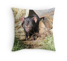 Tasmanian devil . Throw Pillow