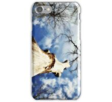 Majestic Witnesses of Time iPhone Case/Skin