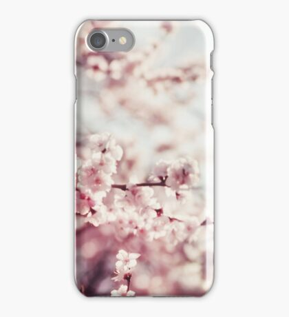 Spring Cherry blossoms, pink flowers. iPhone Case/Skin